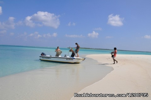 Sand Bank visit (#15 of 24) - Maldives Trips - Fishing, Surfing, & Scuba Diving