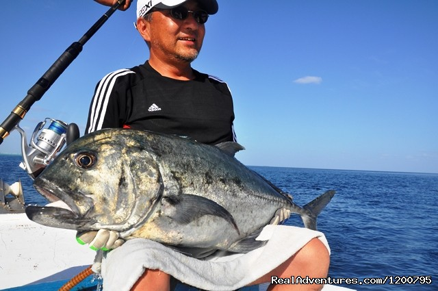 Nakamura san trip with Dolphin  May 2012 - Maldives Trips - Fishing, Surfing, & Scuba Diving
