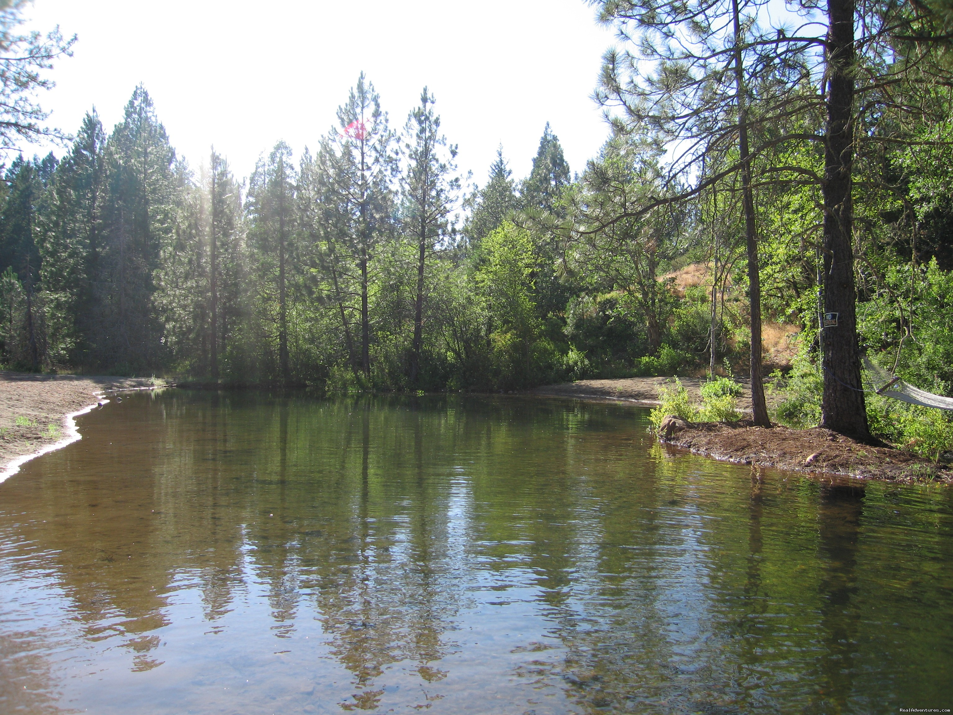 Swim and relax in our privite swimming area | Image #12/18 | Lone Mountain RV Resort and Campground