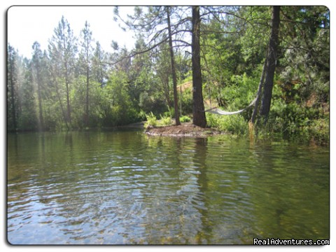 Crystal clean swimming area - Lone Mountain RV Resort and Campground