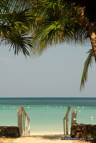 The beach -  Look out over paradise at the Mayan Princess!