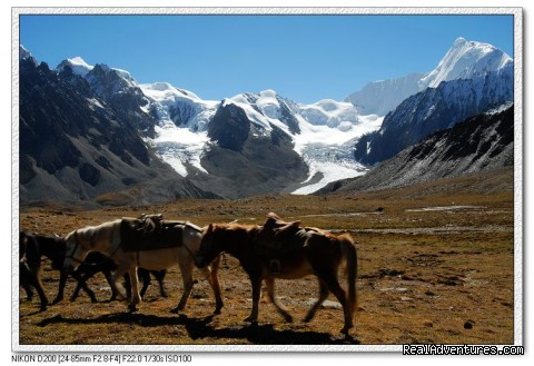Trekking Minya Gongga - King of Sichuan Mount tour