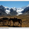 Trekking Minya Gongga - King of Sichuan Mount tour , China Hiking & Trekking