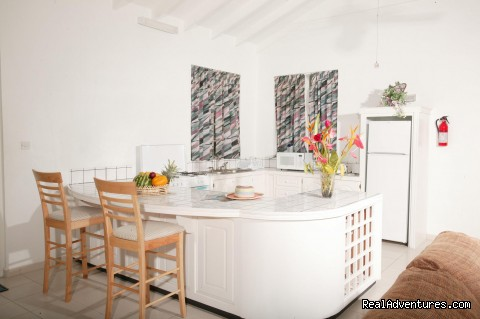 Spacious  kitchen - Four Springs Villa