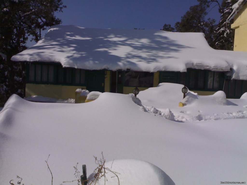 Sagrika Resort During Snow  | Image #6/7 | Sagrika Resort Dalhousie HP India