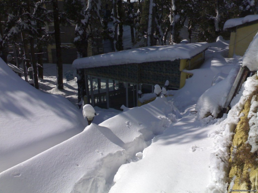 Sagrika Resort During Snow Stairs | Image #7/7 | Sagrika Resort Dalhousie HP India