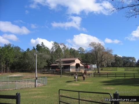 Lady Hawk Farm - Romantic Horseback Riding Getaways