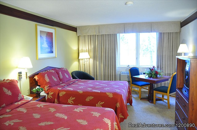 Standard Double Room - Summer Winery, Romance and Family Vacation Getaway