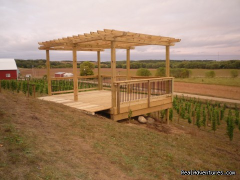 Pergola in the vineyard - InnSpiration Bed & Breakfast- A Country Getaway