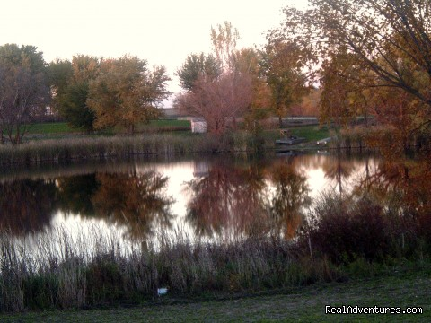 The pond in October - InnSpiration Bed & Breakfast- A Country Getaway