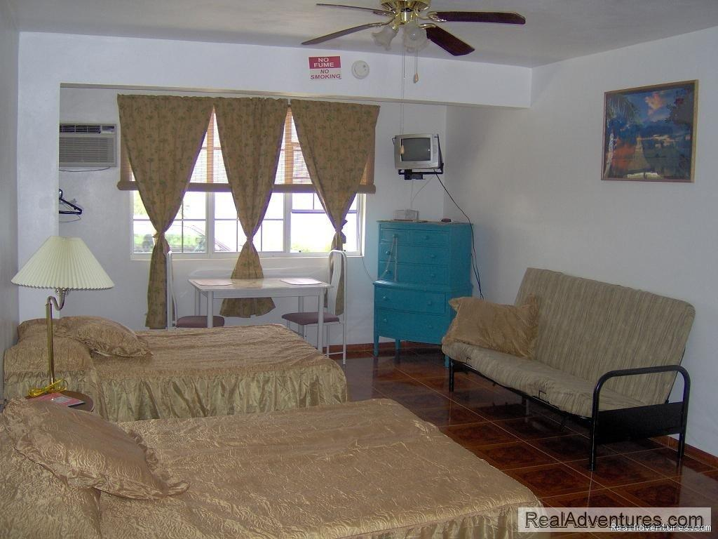 Image #4/6 | EV Vacation Rental in Rincon Puerto Rico