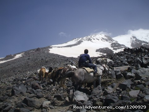 Baggage train - Trekking Ararat,Ararat Expedition,Ararat Ski tours
