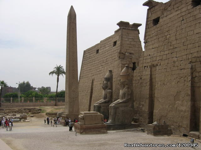 - Egypt Sparrow Tours