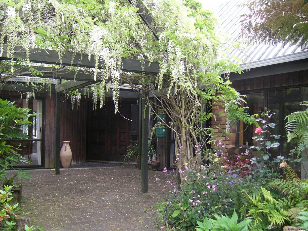 A Panoramic Country Homestay - Pergola with wisteria climber