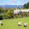 A Panoramic Country Homestay Rotorua, New Zealand Bed & Breakfasts