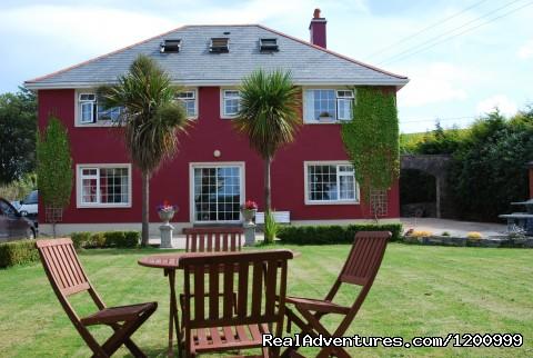 Lurganhouseb&b Back Garden - Lurgan House
