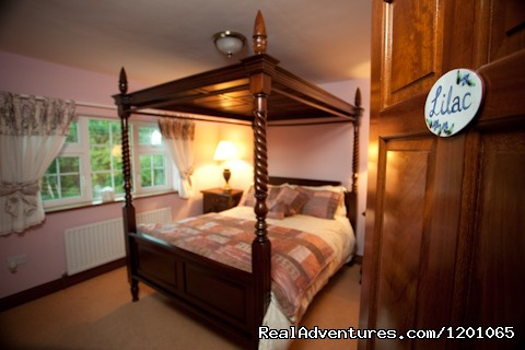 - Avarest Bunratty B&B