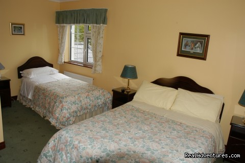 Twin room at Carramore Lodge - Carramore Lodge