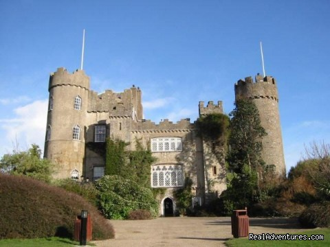 Malahide castle - Evergreen