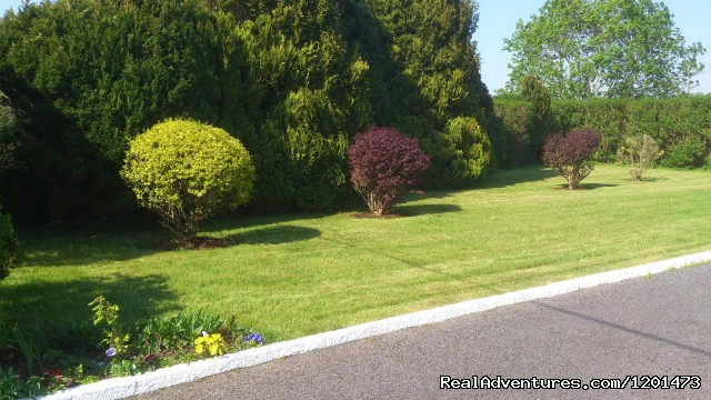 Side Garden (#4 of 13) - Birchgrove