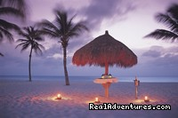 Romantic Beach Dining - Bucuti Beach Resort
