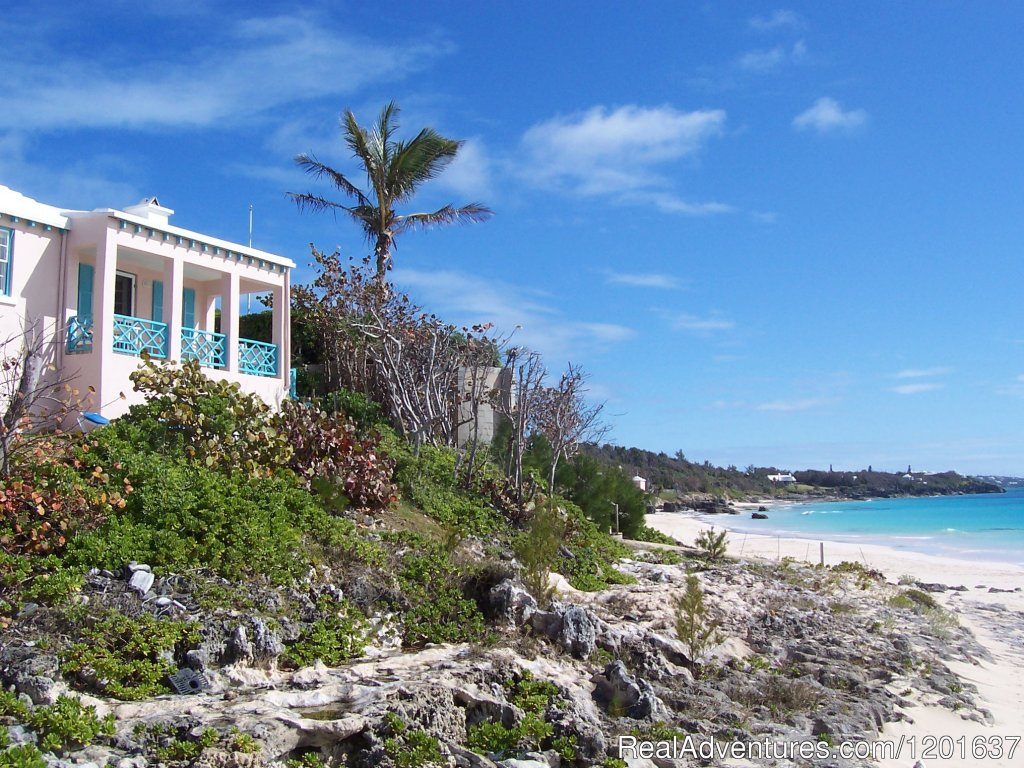 Beach Home Cottage on the Beach | Image #5/6 | Grape Bay Cottages