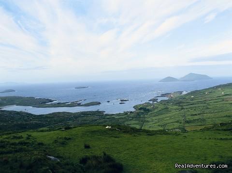 Derrynane Harbour & Atlantic Ocean - Ring of Kerry Seaside Adventures @ Derrynane Hotel