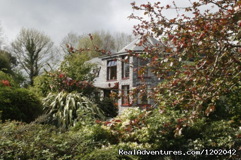 Kathleens Country House a 'hidden gem' (#2 of 20) - Kathleens Country House The Best Irish Hospitality