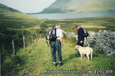 Walking your dog on one of the old roads - Kylemore Pass Hotel