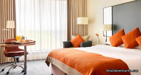 Standard bedroom  (#3 of 4) - Hilton Dublin Kilmainham