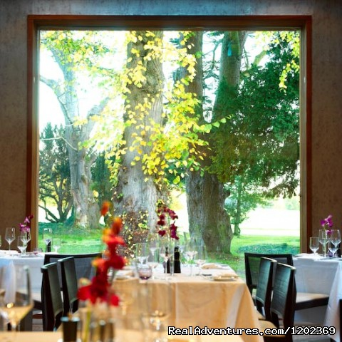 The Linden Tree Restaurant - Carton House
