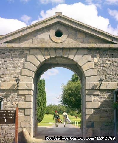 Arch (#5 of 5) - Carton House