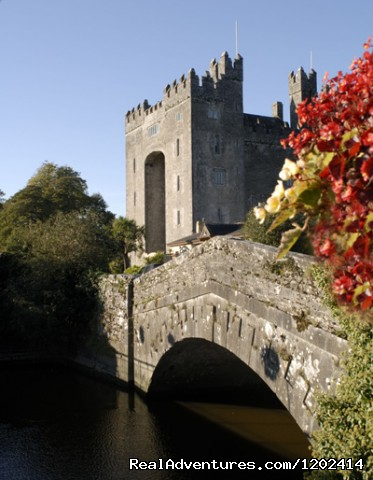 Bunratty Castle & bridge view  (#1 of 8) - Bunratty Castle & Folk Park