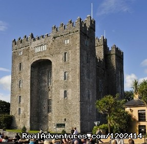 Bunratty Castle  - Bunratty Castle & Folk Park