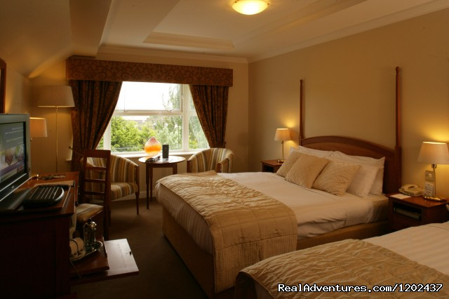Standard Deluxe Bedroom - The Westwood Hotel