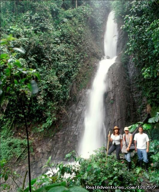 Catarata Azul Yacu - Pampa Hermosa Ecolodge
