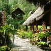 Pampa Hermosa Lodge Amazonas, Peru Hotels & Resorts