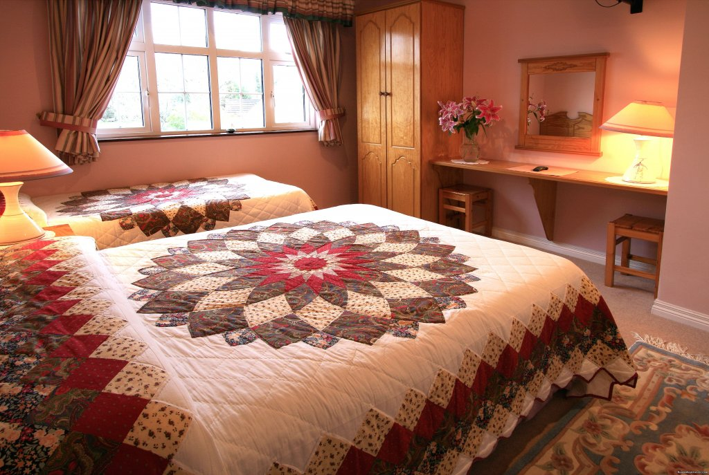 Ash Room | Image #5/8 | Idyllic Ring Of Kerry  B&B at Willow Lodge