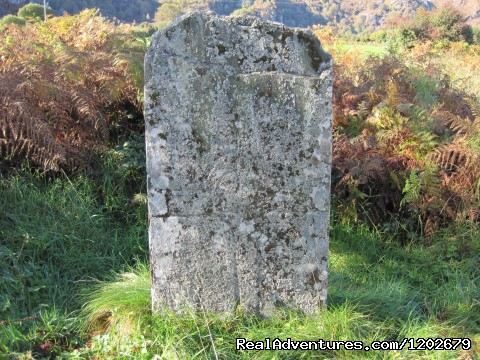 5th Century Cross Slab at Salmon Leap Farm - Salmon Leap Farm