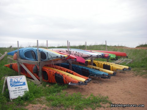 Kayaks on Rack - Outside Expeditions - Prince Edward Island