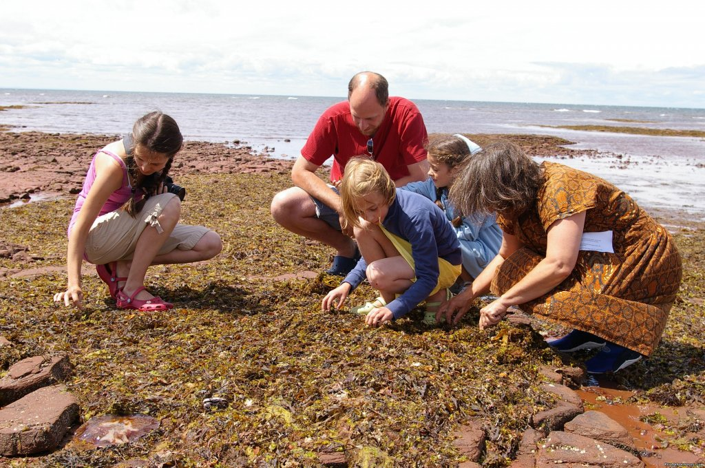 Seaweed Secrets | Image #5/8 | Experience PEI-unique hands-on learning adventures