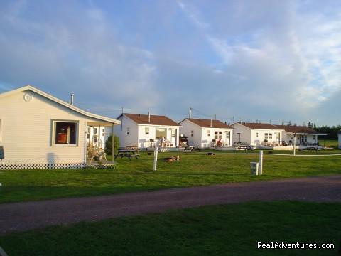 - Schurman's Shore Waterfront Cottages