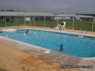 Heated Saltwater Pool - St. Lawrence Motel - HSK Suites