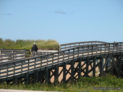 Boardwalk leading to beach area - Swept Away Cottages