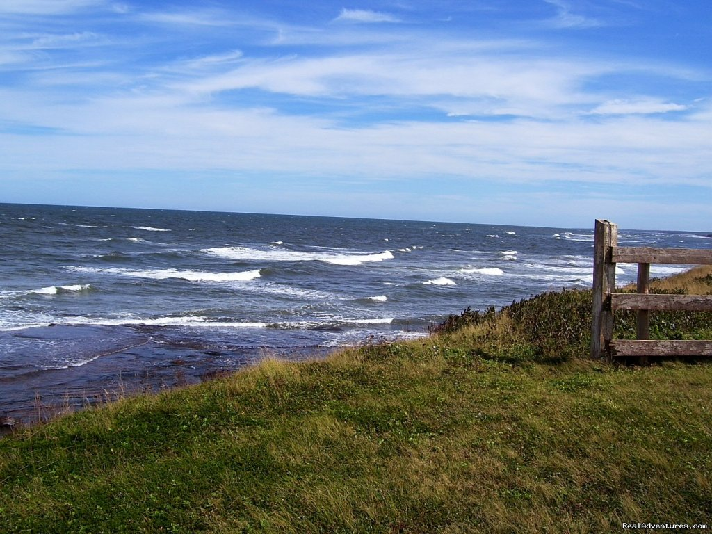 Oceanfront Peace&Privacy at Glen Green by the Sea Monticello, Prince Edward Island  Vacation Rentals