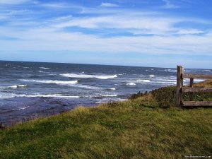 Oceanfront Peace&Privacy at Glen Green by the Sea Vacation Rentals Monticello, Prince Edward Island