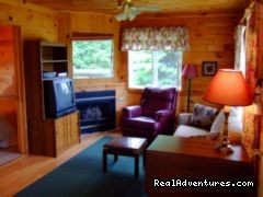 Superior Living Room - Sandpiper Cottages and Suites