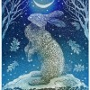 Solstice Rabbit