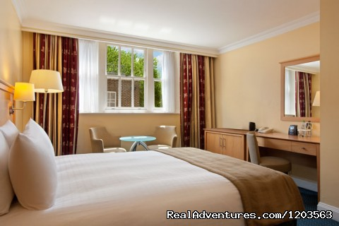 Hilton Double Guestroom - Hilton London Euston