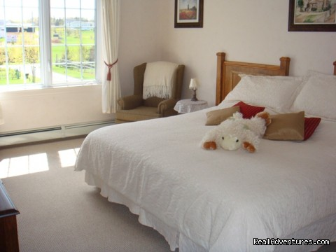 Twin Suite - Relax at Firedance Country Inn Bed & Breakfast